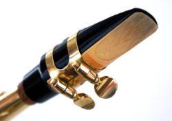 Saxophon Blatt